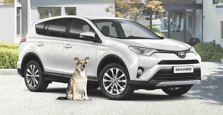 Toyota für Hundebesitzer